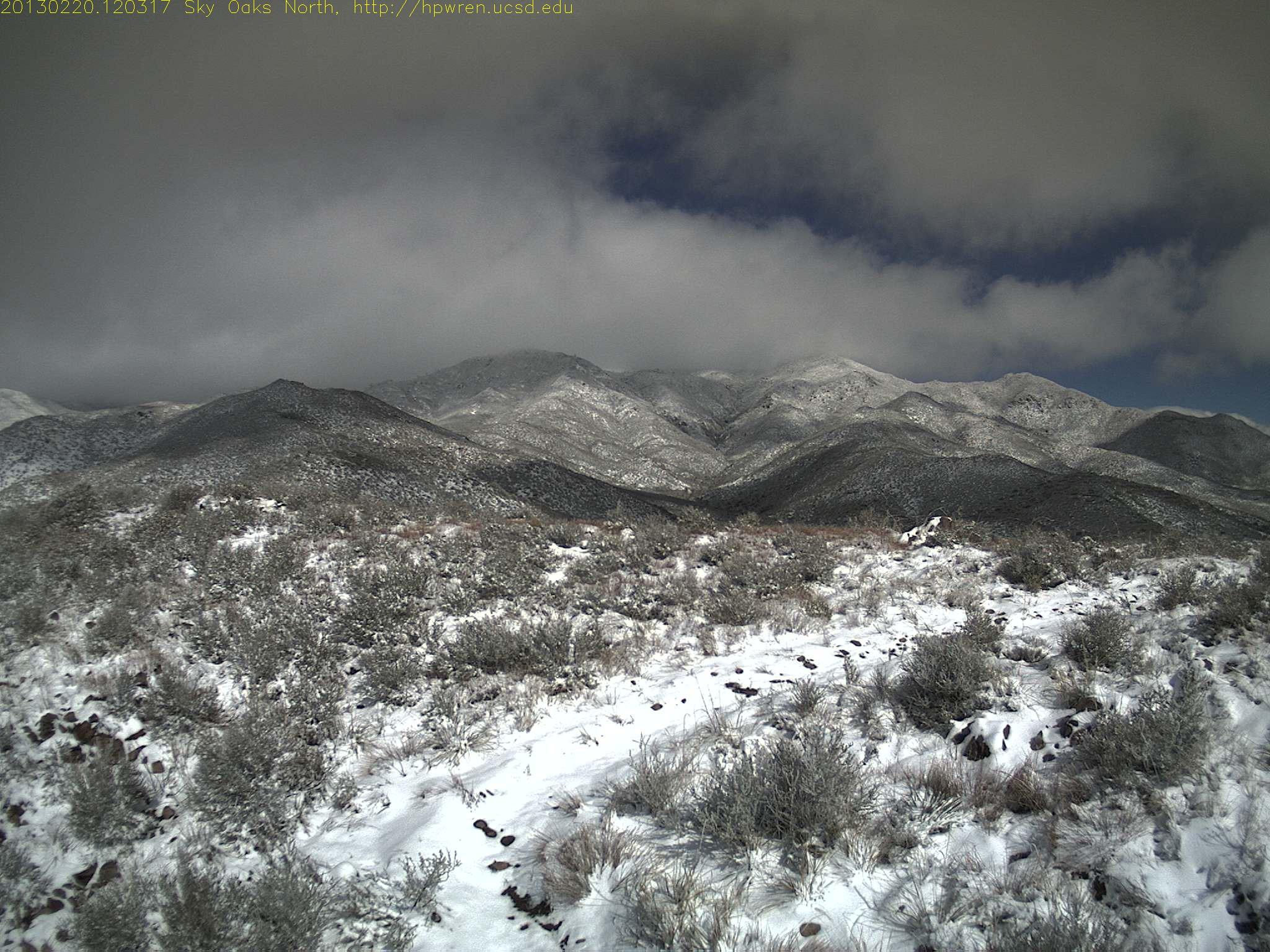 Sky Oaks Snow 2013