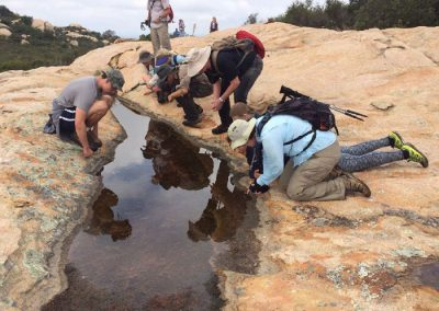 hikers exploring an ephemeral pool