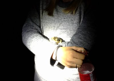 A young woman in gray cradles a frog, illuminated by a flashlight