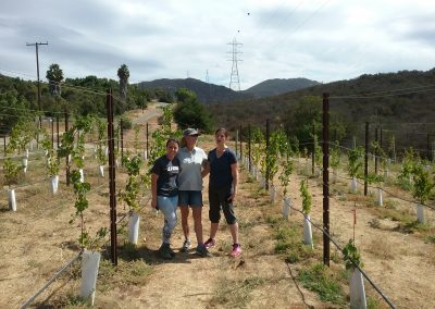 Three woman stand together between two rows of grape vines