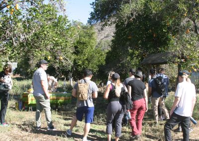 Students standing in an orange grove while a man at a table squeezes orange juice