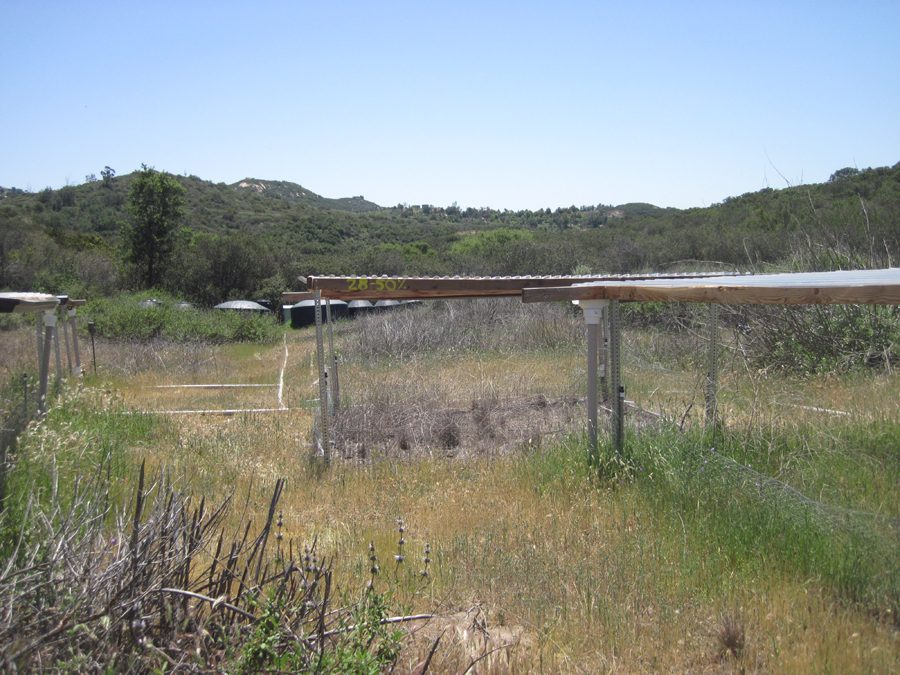 Rainfall shelters in a landscape, the one in the center has dead plants, the one to the right is green and lush