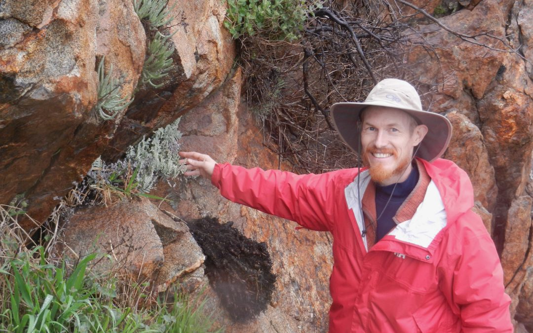 Researcher in red raincoat points at a fern on a cliff