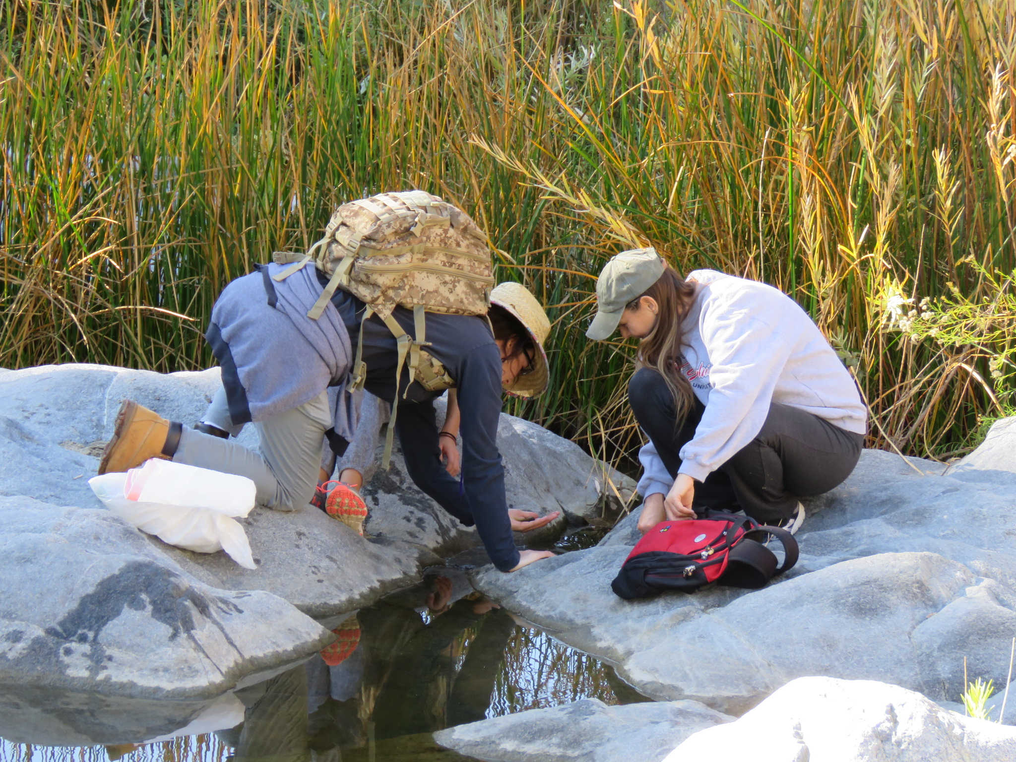 two young people kneeling down to look at water in stream